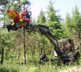 R125 Big Foot - Forester